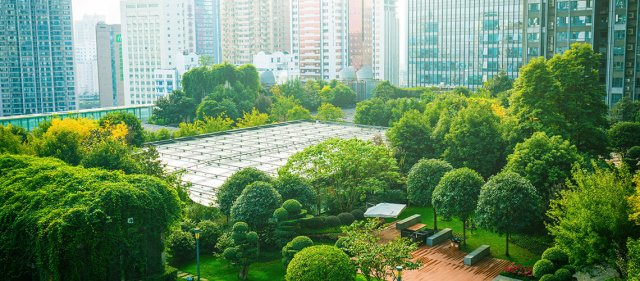 eco friendly city and products